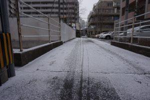SNOW DSC05637